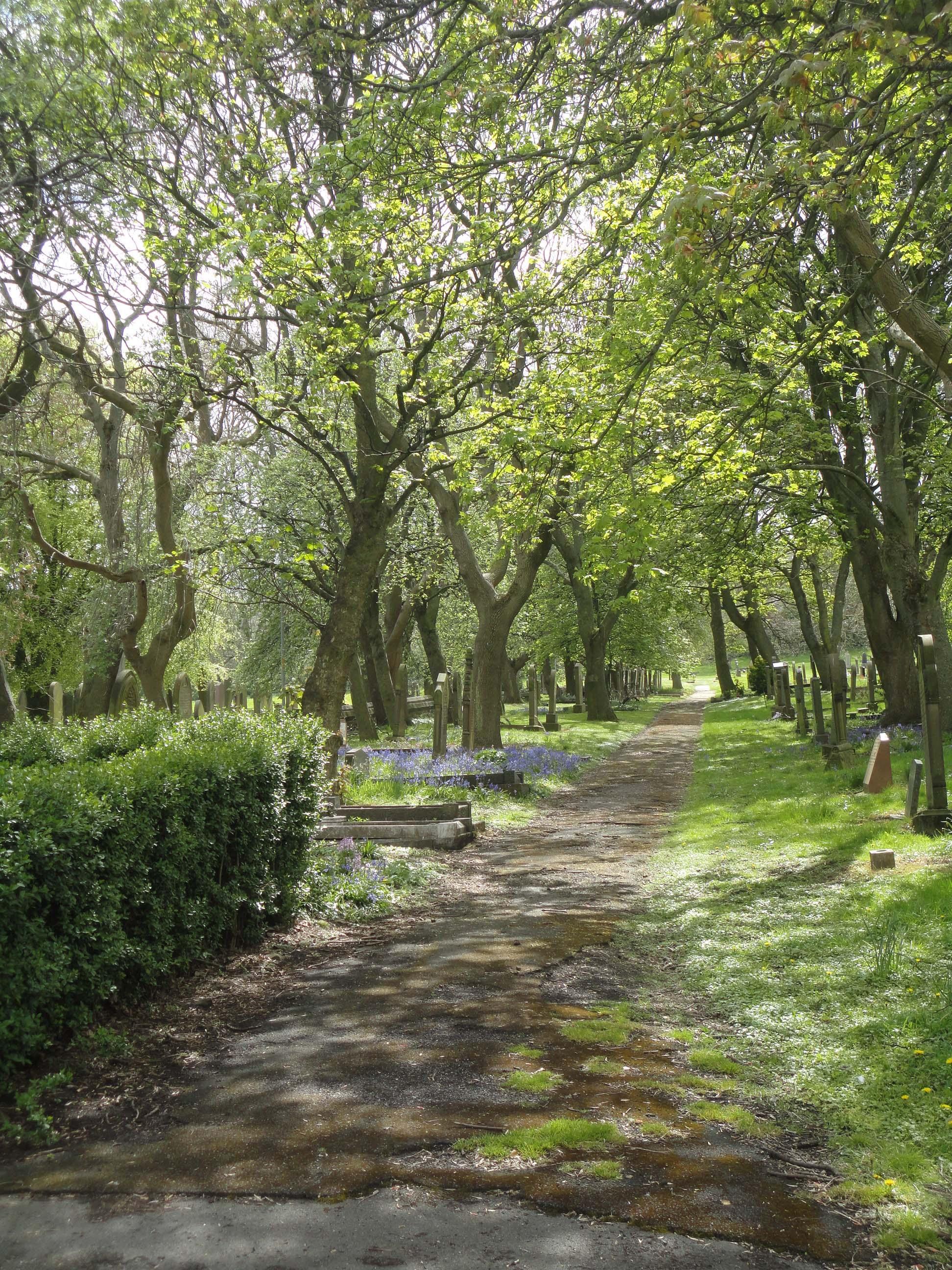 Snee Inside Gateshead East Cemetery